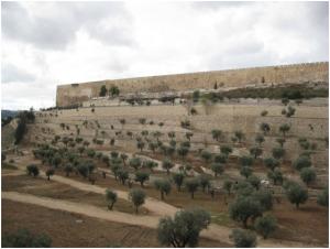 national park jerusalem wall