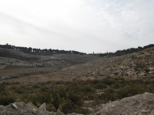 אדמות עיסוויה ומבט לעבר הר הצופים (Copy)